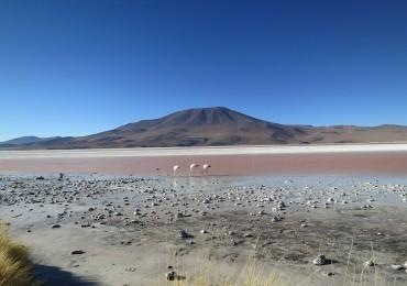 viaggio cile bolivia