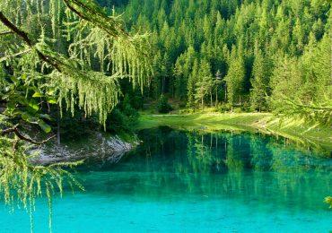 gruner see austria