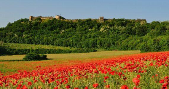 Rocca di Lonato